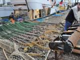 Gedeputeerde De Bat: 'Wij zijn voortdurend met het dossier pulsvisserij bezig'