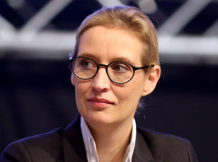 AfD-voorzitter Alice Weidel Beeld null