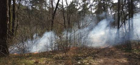 Bosbrand tussen Waalre en Valkenswaard