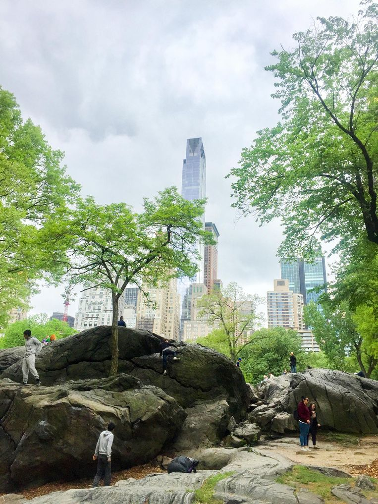 Central Park. Beeld Corinne van Duin