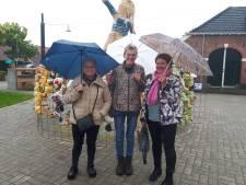 Kunstliefhebbers komen ondanks regen naar Diepenheim