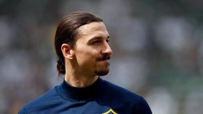"""""""Bologna in pole voor Ibrahimović, maar vrouwlief heeft andere wensen"""""""