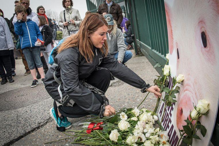Heel wat mensen legden witte rozen neer aan de poorten van het slachthuis.