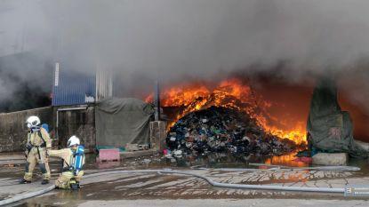 VIDEO: Hevige schade bij industriebrand aan Kampenhout-Sas