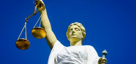 Eigenaar motor kruipt in busje van dief na poging diefstal, rechter legt werkstraf op