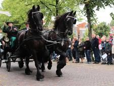 Exit voor ringrijderij in Blokzijl na veiligheidseisen
