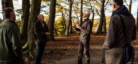 Kap van 800 bomen in Arnhem uitgesteld in afwachting onafhankelijk onderzoek