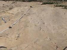 Mensachtige voetafdrukken gevonden die ouder zijn dan voeten zelf