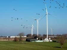 Protestborden tegen windmolenpark op rotondes Wijk bij Duurstede verwijderd