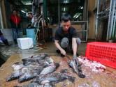 Aziatische bevolking wil af van dierenmarkten