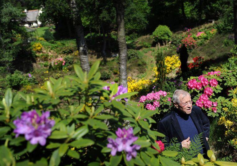 Marcel van Dam plantte 20 duizend bomen en struiken op zijn landgoed, waaronder 1200 rododendrons. Beeld Marcel van den Bergh /  De Volkskrant