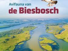 Monumentaal naslagwerk 'Avifauna van de Biesbosch' vanaf december te lezen