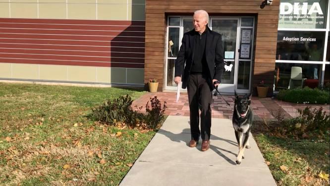 Biden verzwikt enkel tijdens spelen met hond