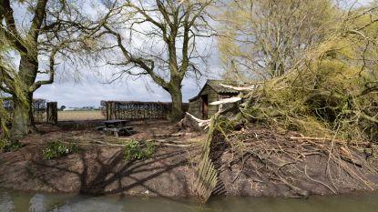 Gemeente Rumst verzamelt aanvragen stormschade