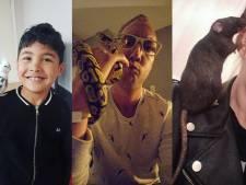 Deze drie bijzondere Twentse huisdieren krijgen op Dierendag een extraatje