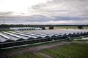Een met het coronavirus besmette nertsenfokkerij in het Limburgse Vredepeel. De fokkerij is eigendom van Jos van Deurzen.
