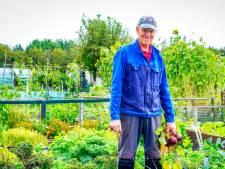 Nico (75) hoeft door eigen moestuin niet naar de supermarkt: 'Ik heb ook een bananenboom'