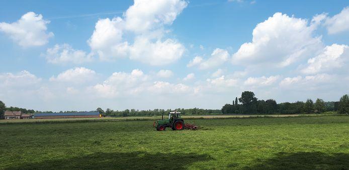 Een boer schudt gras in het buitengebied tussen Heesch en Vinkel. Op de achtergrond het terrein waar Heesch West komt, met ook grote windmolens.