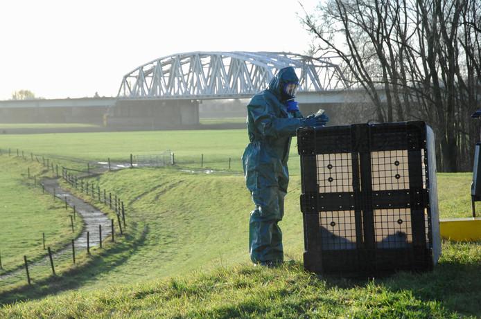 Een vat waar 1000 liter in gaat is gevonden langs de Schaapsdijk in Arnhem. Vermoedelijk zijn honderden liters chemisch afval uit het vat gelopen.
