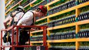 """""""Bitcoins minen zal in toekomst haast niets meer opleveren voor kleinere spelers"""""""