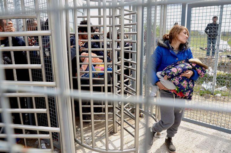 Een migrantenfamilie komt de Hongaarse transitzone Röszke binnen. Beeld AFP
