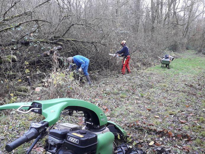 De vrijwilligers van Natuurpunt Rupelstreek aan de slag in Walenhoek.