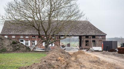 Zaakvoerder van Containerdienst Vindevogel in levensgevaar na val door dak in Oudenaarde