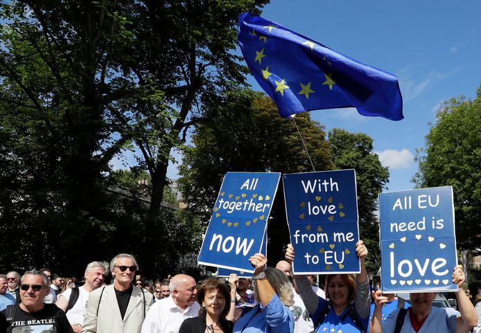 Anti-brexitdemonstraten voegden zich gisteren bij Beatles-fans die op dé zebra in Abbey Road de vijftigste verjaardag van een wereldberoemde foto herdachten.