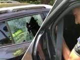 Politie redt hond uit snikhete auto