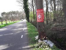 'Vangrails' langs bomen Corleseweg Winterswijk-Lichtenvoorde