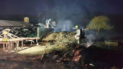 Brandweer rukt massaal uit voor woningbrand, maar het blijkt afvalbrand