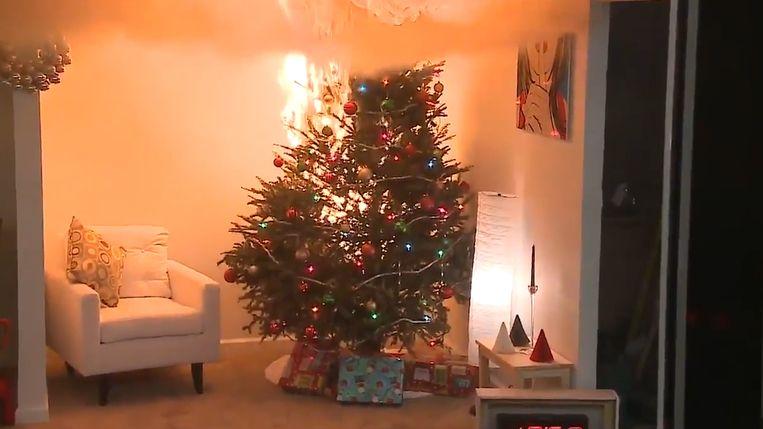 Een kerstboom die al te lang geen water heeft gekregen, zal sneller opbranden dan een kerstboom die wel voldoende water krijgt.