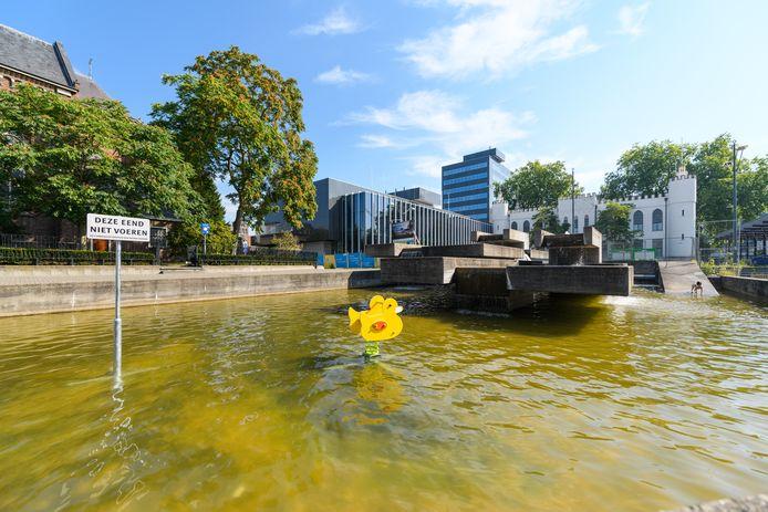 Fountain Duck Ride