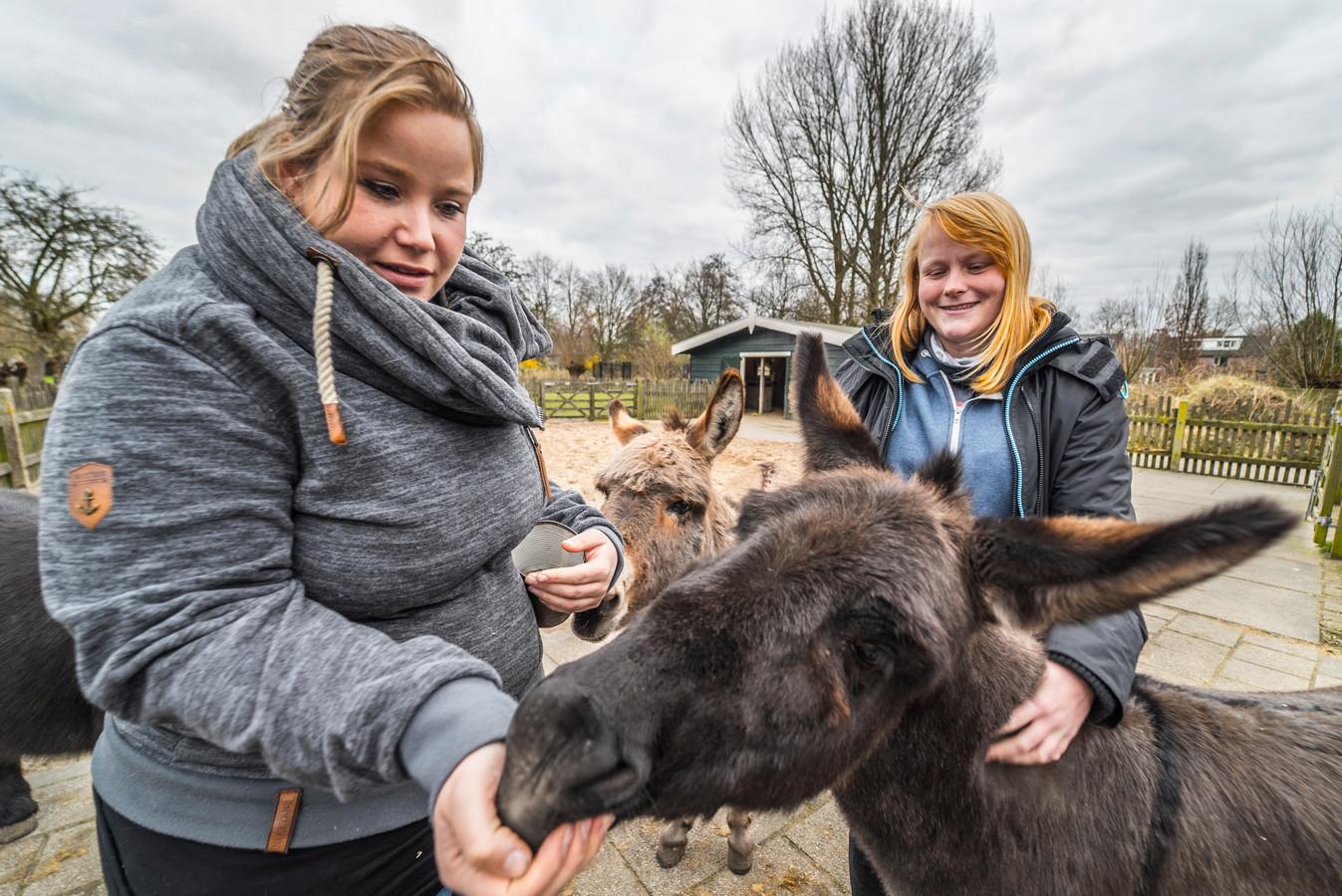 De Hellendoornse raad gaf dinsdagavond groen licht voor de komst van een kinderboerderij in Nijverdal.