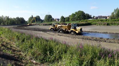 Strijd tegen steekmuggen in Schellebelle en Gentbrugge gaat onverminderd verder