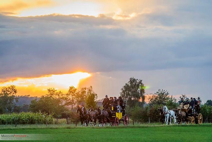 Paarden in het buitengebied van Zutphen. Komend weekend is het evenement de Nachtrit van Zutphen weer te beleven in Zutphen en omgeving.