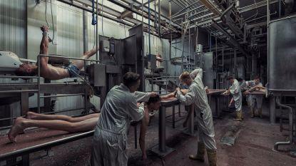 Vlaamse fotograaf maakt confronterende fotoreeks: zo ziet een slachthuis eruit met mensen in plaats van dieren