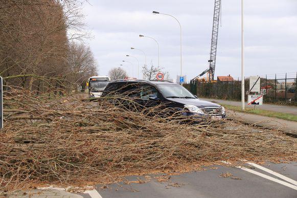 De Koningin Astridlaan in Burcht was een hele tijd in beide richtingen versperd.