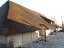 Onder rieten kap van in Esch herbouwde dwarsdeelschuur uit 1767 komt zadelkamer paarden