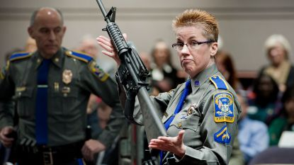 Families van slachtoffers Sandy Hook mogen wapenfabrikant aanklagen