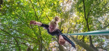 Boompie klimmen kan nu gewoon ook veilig