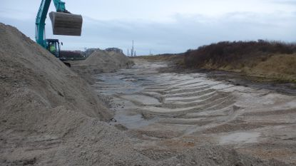 Natuurgebied De IJzermonding krijgt nieuwe 'slikken' en 'schorren' als compensatie voor stormvloedkering