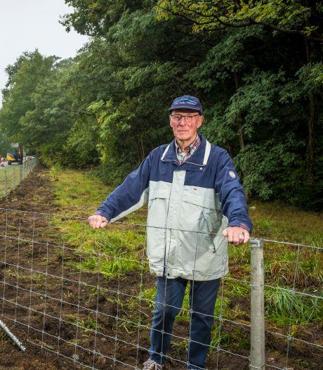 Lokale zwijnenkenner weet het zeker: 'Veel zwijnen in Wapenveld lopen om nieuwe raster heen'
