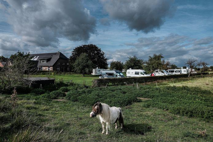 De Wellinghoeve bij Groessen mag uitbreiden met een minicamping en een buitenzwembad.
