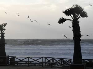 Des paquets de cocaïne déversés sur les côtes françaises