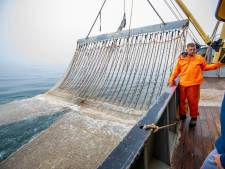 Verbod op pulsvissen definitief: 'Gitzwarte dag'