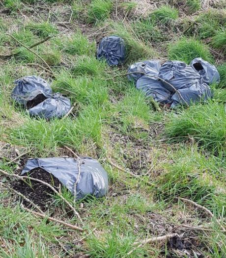 Twaalf vuilniszakken met hennepafval gevonden aan Koekoeksedijk in Zevenbergen