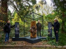 """Bijzondere knobbelstam wordt monument: """"In Amerika maken jagers jacht op dit hout"""""""