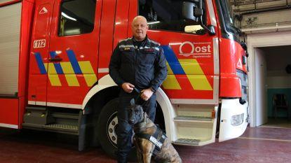 Unieke ervaring: Brandweerman uit Dendermonde is vanaf nu ook hondenbegeleider voor B-fast bij zware aardbevingen of rampen