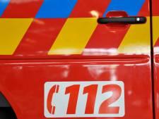Dronken Gentenaar ranselt twee politiemannen af die hem willen helpen na verkeersongeval: parket eist 15 maanden cel